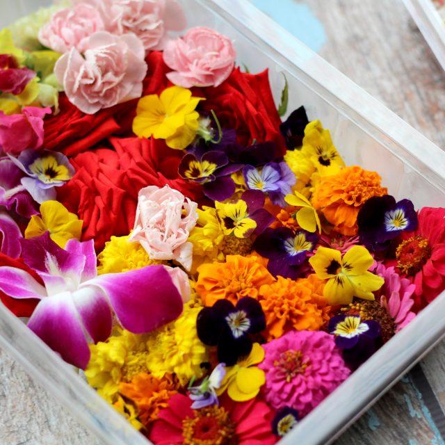 Bloemen & beeldjes