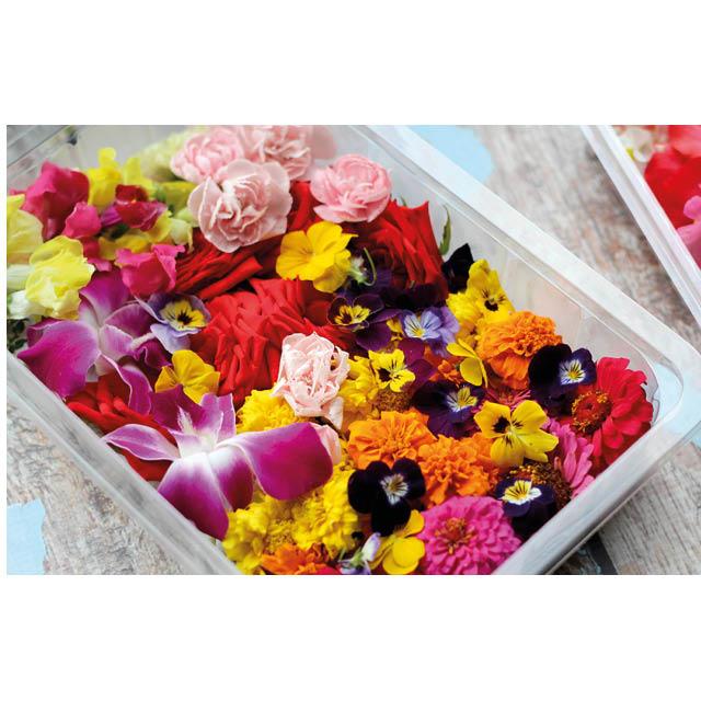 Woonaccessoires - PTMD en bloemen